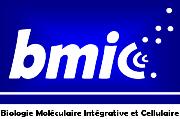 http://www.e-monsite.com/biodocslyon/docs/bmic.png