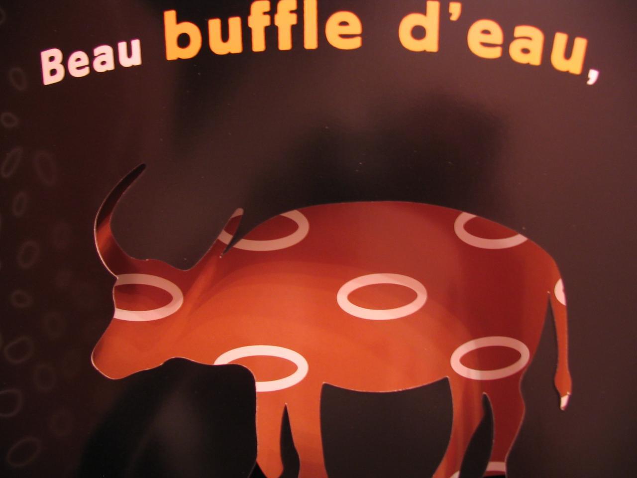 buffle 4