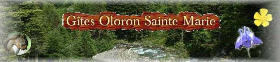 |||Gites Pyrénées | Location | Montagne | Oloron Sainte Marie|||