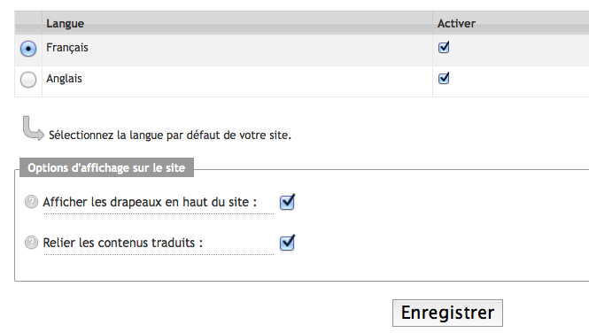créer site multilingue : options