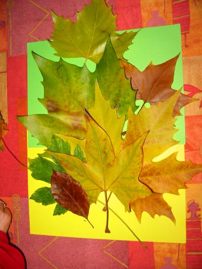 J'habite un paysage d'automne