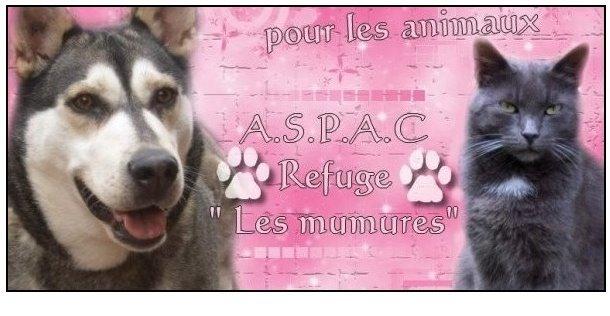 ASPAC Association protectrice pour les animaux