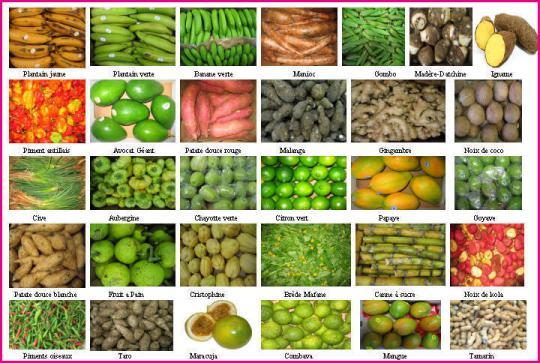 Saveurs creoles - Liste fruits exotiques avec photos ...