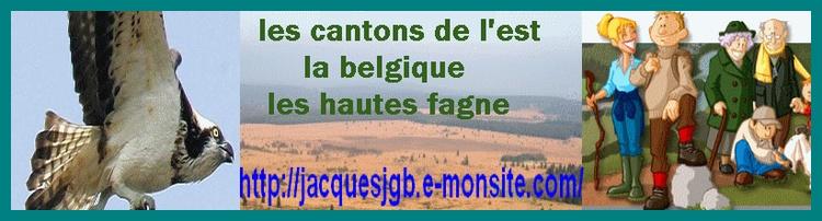 la belgique les cantons de l'est