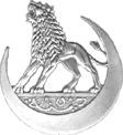 Le 1er Bataillon de Mitrailleurs - 5ème DINA  - Mai 1940