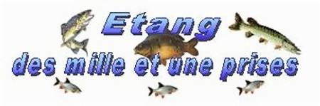 Etang des mille et une prises à Chemilly sur Yonne (89)