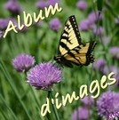 Album d&#039;images