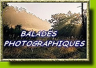 BALADES  PHOTOGRAPHIQUES !