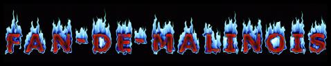 la passion du malinois
