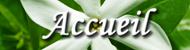 Accueil/Home