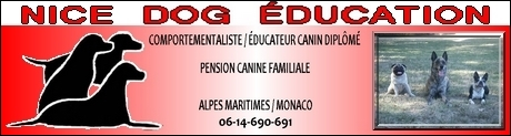 NICE DOG EDUCATION - Educateur Canin Comportementaliste 06 et 83