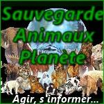 Sauvegarde-Animaux-Planète