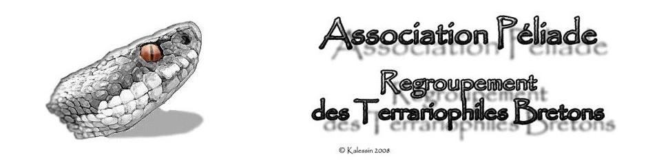 Association Péliade : Regroupement des terrariophiles bretons