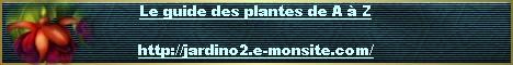 Le guide des plantes de A à Z