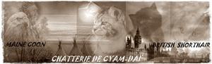 CHATTERIE DE CYAM-DAÏ