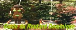 GUIDE DU ROUTARD GUIDE DE LA DOMINIQUE, renseignements et témoignages sur l'ile de la dominique aux antilles