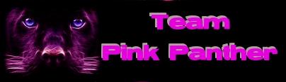 TEAM PINK PANTHER