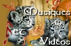 Vidéos musicales - pour le plaisir