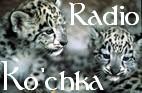 Radio Ko'chka