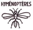 Hyménoptères
