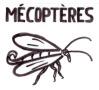Mécoptères