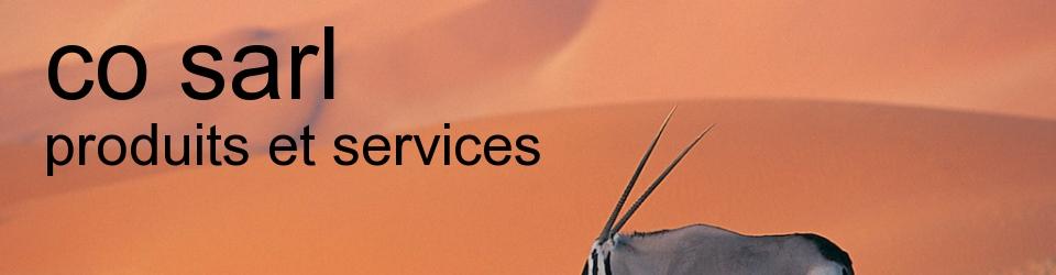 co-sarl   :   produits resines et travaux de renovation du batiment