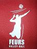 feurs volley ball