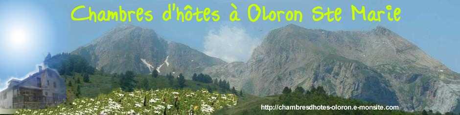 |||CHAMBRE D'HOTE  OLORON SAINTE MARIE | PYRENEES 64|||