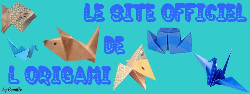 La passion de l' Origami