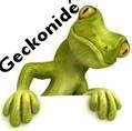 Geckkonidae