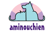 l'association aminouchien