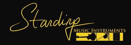STANDING MUSIC