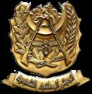 l'Armée de libération nationale (ALN)
