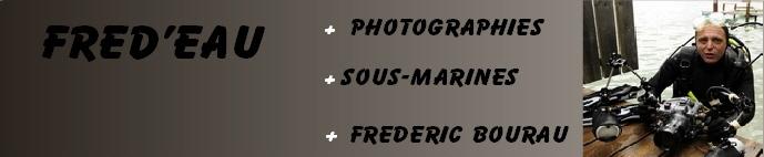 FREDEAU Photographies sous-marines de Frédéric Bourau