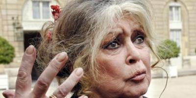 Brigitte Bardot veut sauver un chien qui a défiguré une fillette
