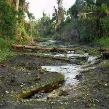Une rivière en Slovénie et au Costa Rica ont disparu après un tremblement de terre