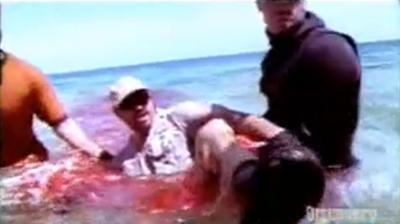 Enorme attaque de Requin sur un homme