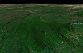 70 hectares de forêt  inexplorée par l'homme et découverte sur le web