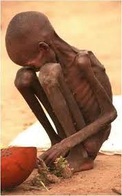 Que pensez vous de la famine en éthiopie