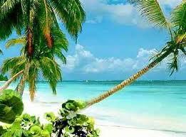 Louez une île pour vos vacances
