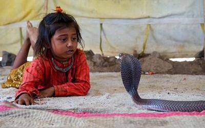meru nath madari 4 ans charmeurs de serpents