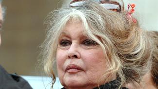 Brigitte Bardot veut sauver le bull-terrier qui a défiguré une fillette