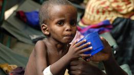 Plus de 350.000 Somaliens menacés par la famine