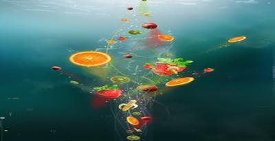 La Vitamine C est un élément indispensable à notre organisme