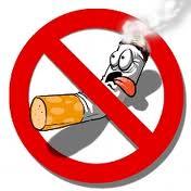 Que pensez vous de Interdiction de fumer dans tous les lieux publics