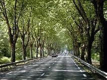 Insolite La route maudite de la départementale 419