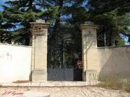 Affaire de la profanation du cimetière juif de Carpentras