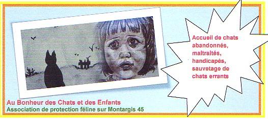 Charming Jeu De Chat En Ligne Pour Ado #2: 96790535logo-2-emonsite-jpg.jpg
