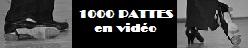 1000 PATTES en vidéo