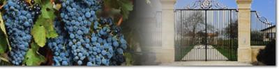 Dégustation des vins avec sortir-loisirs.com